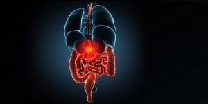 Gastroenterology & Urology 2019