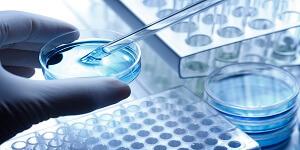 Stem Cells & Regenrative Medicine