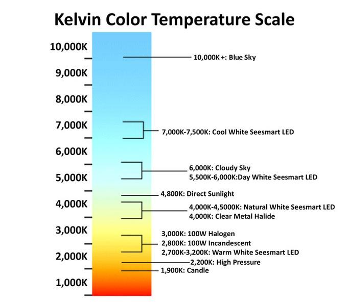 Kelvin Temperature Scale
