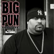 DJ Soul - Big Pun Tribute