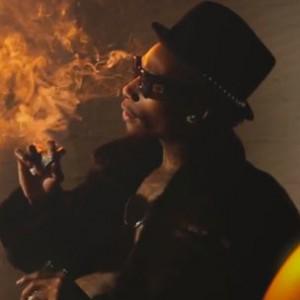 """Wiz Khalifa - """"The Tweak Is Heavy"""""""