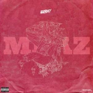 Flatbush Zombies - MRAZ