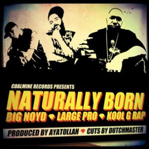 Big Noyd, Large Professor & Kool G Rap - Naturally Born