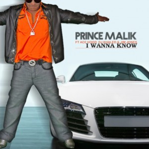 Prince Malik f. Jim Jones, DJ Khaled & Ace Hood - I Wanna Know Remix