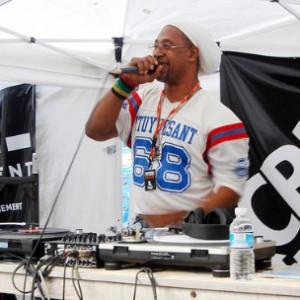 DJ Kool Herc, Big Daddy Kane, Rakim Among 2013 NYC Summer Stage Performers