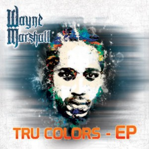 Wayne Marshall f. Ace Hood, Baby Cham & Waka Flocka Flame - Go Harder