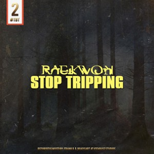 Raekwon - Stop Trippin