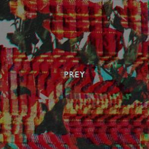 Doley Bernays - Prey