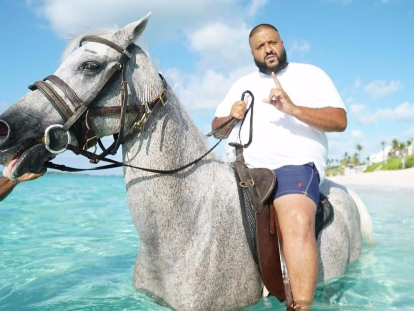 No, DJ Khaled did not Break the back of A Horse