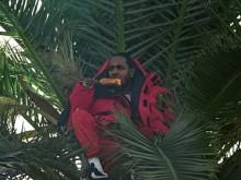 "Kendrick Lamar & Jay Rock Rap From A Palm Tree In ""King's Dead"" Video Featuring Future"