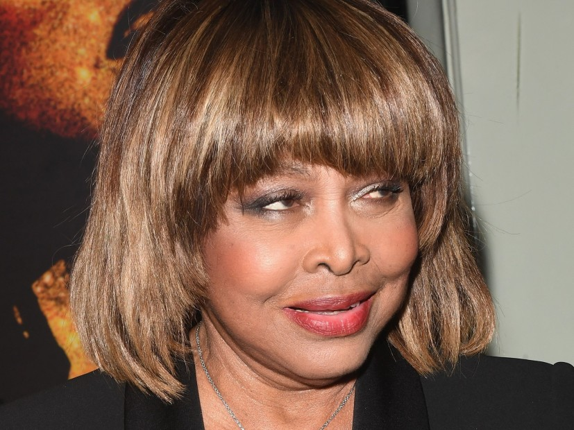 Tina Turner, the Son, according to reports, the Suicide