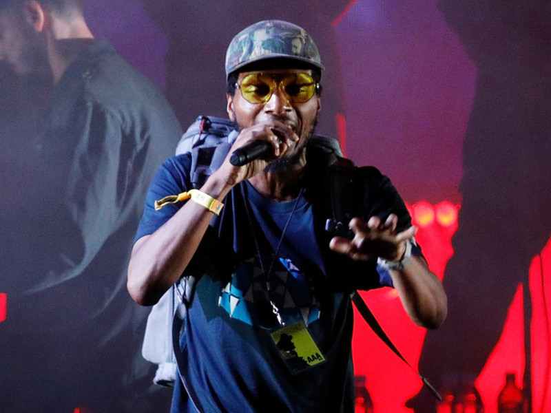 Del The Funky Homosapien Hospitalized After Falling Off Stage At The Roskilde Festival 2018