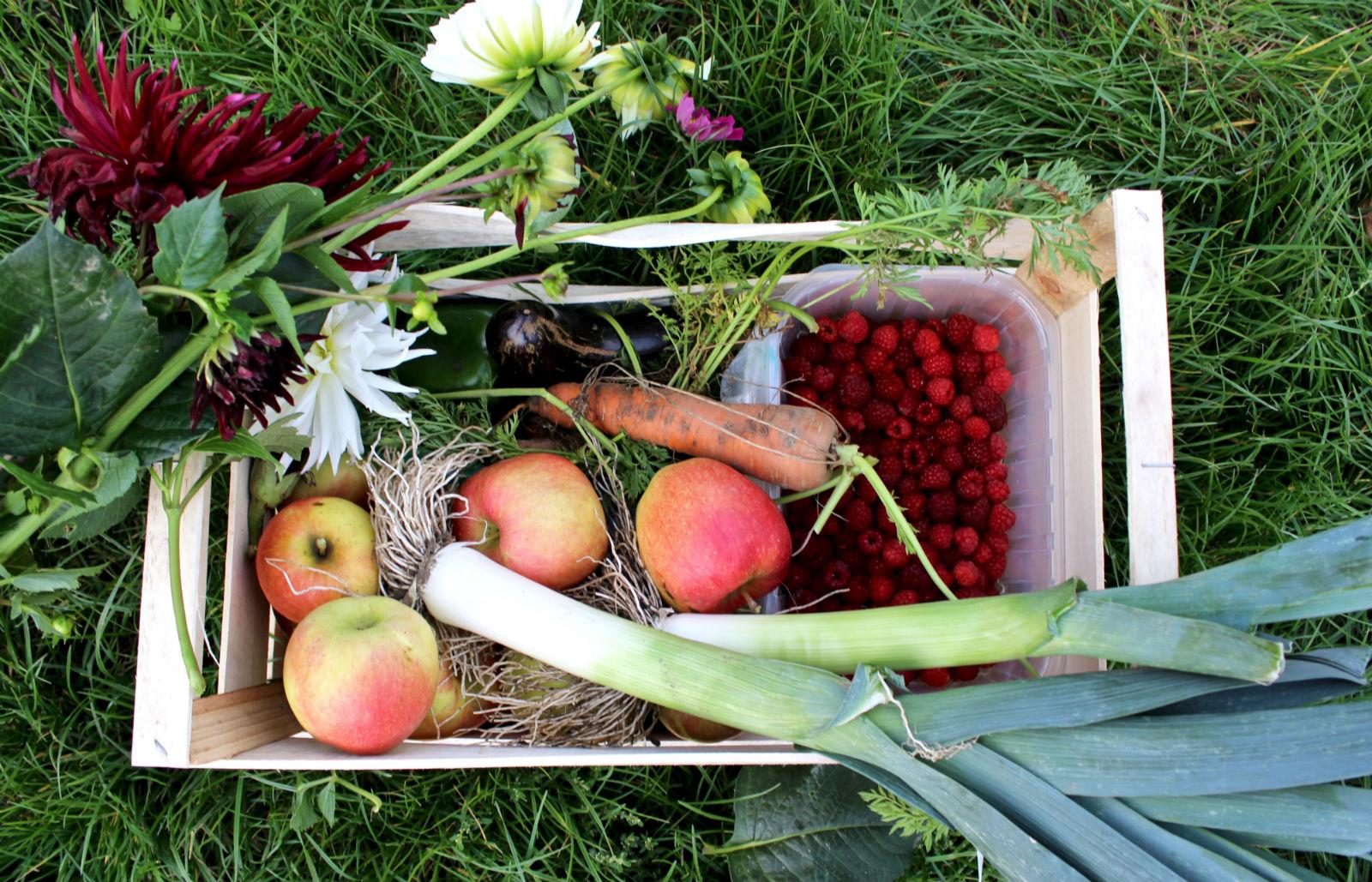 HiP Paris blog. Cueillette de Gally. A cornucopia of fresh produce