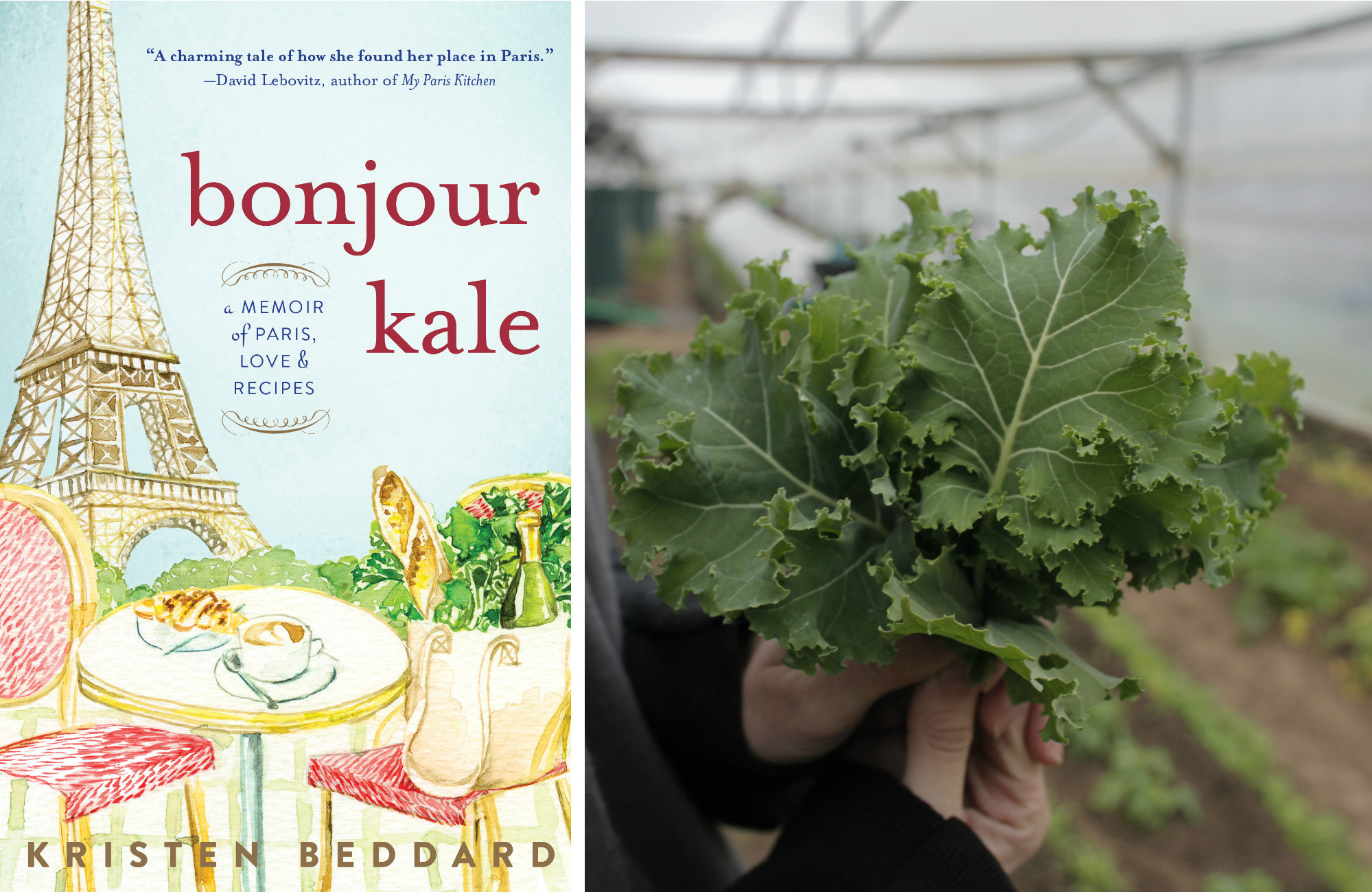 Chatting with Kristen Beddard, Auther of Bonjour Kale and Founder of The Kale Project