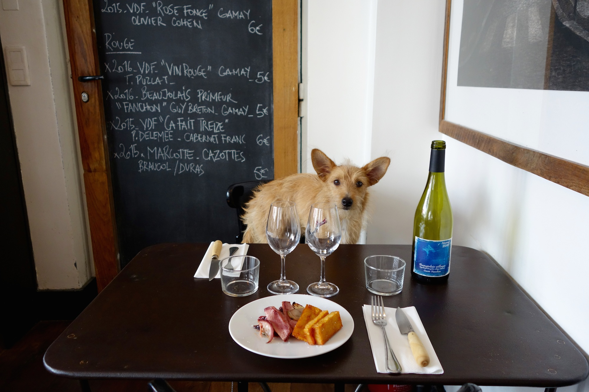 HiP Paris Blog explores dining with dogs in Paris