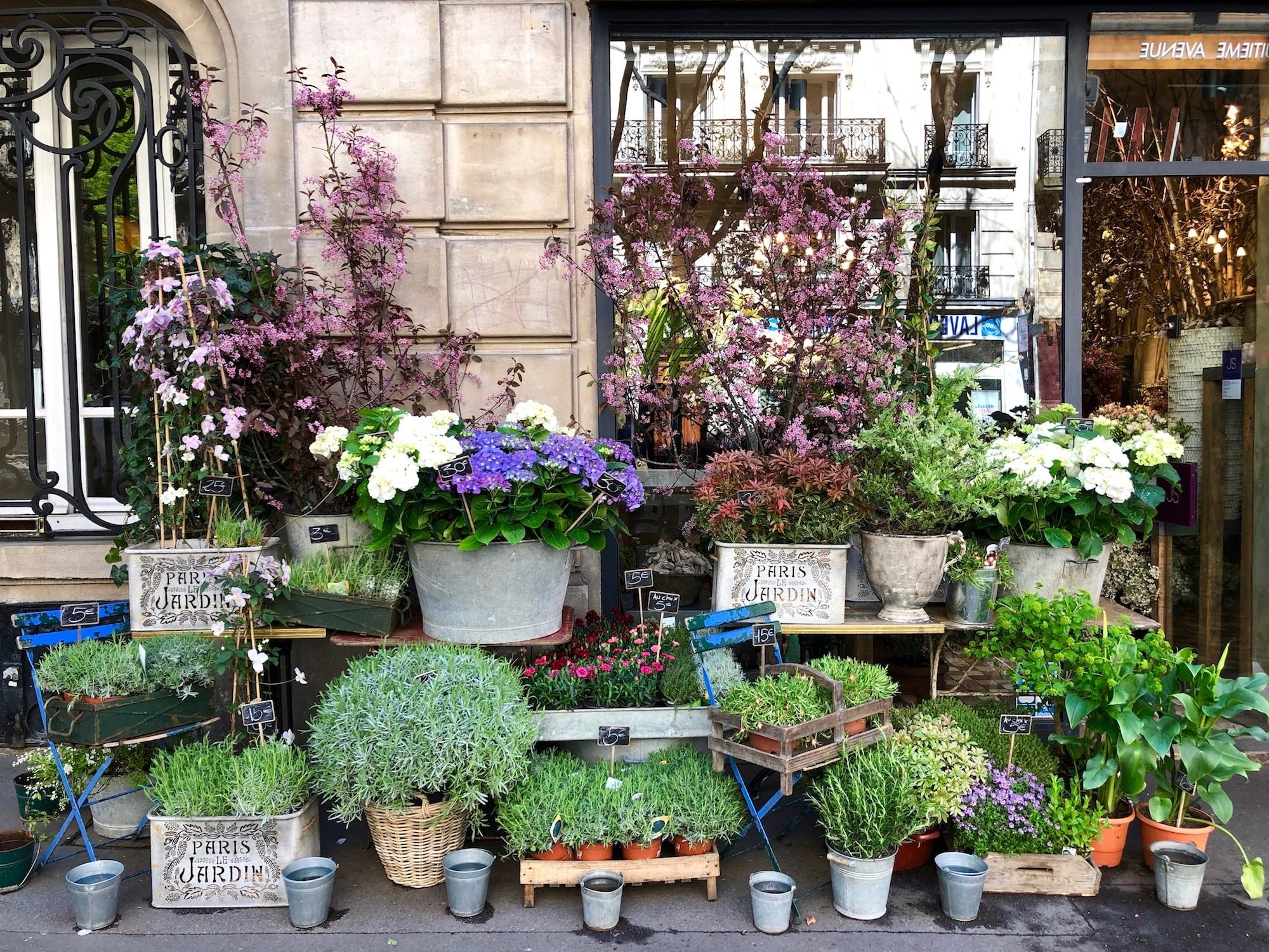 Paris brims with creative flower shops like one with lots of succulents and flowers to choose from.