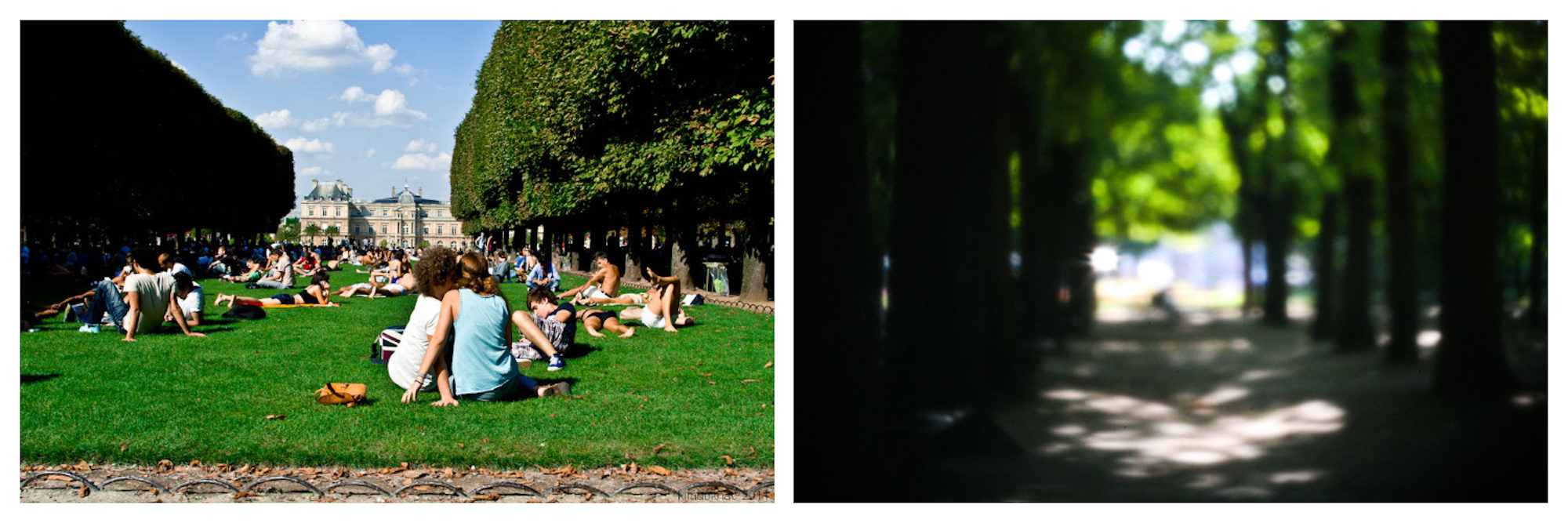 One of the best places to tan in Paris in summer is the Jardin de Luxembourg for its stretch of lawns (left) and tucked-away corners in the shade of swaying trees (right).