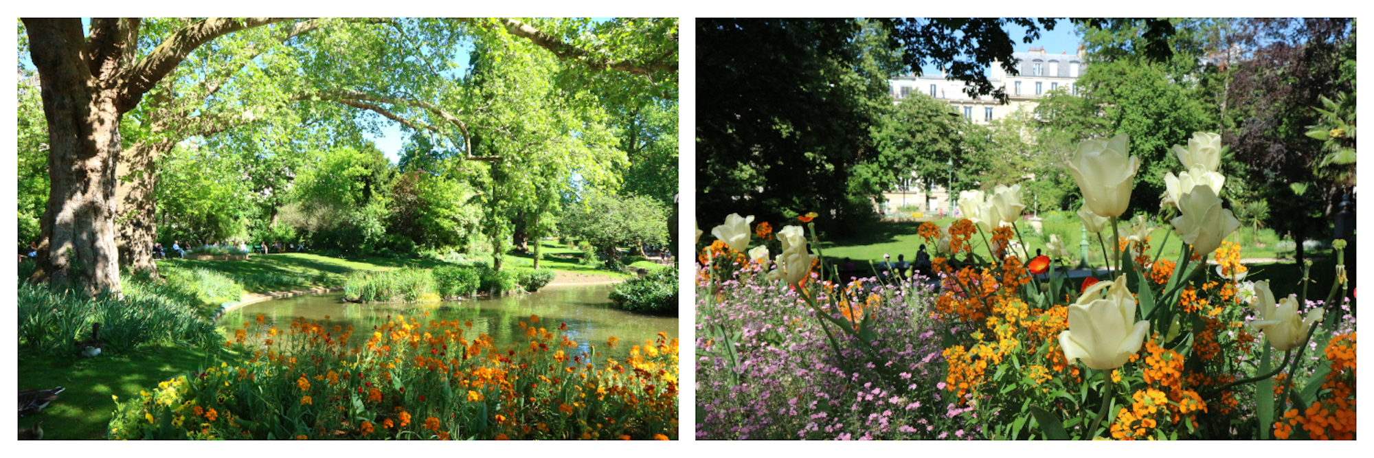 The idyllic Square des Batignolles park in Paris' 17th arrondissement with its pond and colorful flowers is the perfect summer spot in the city.