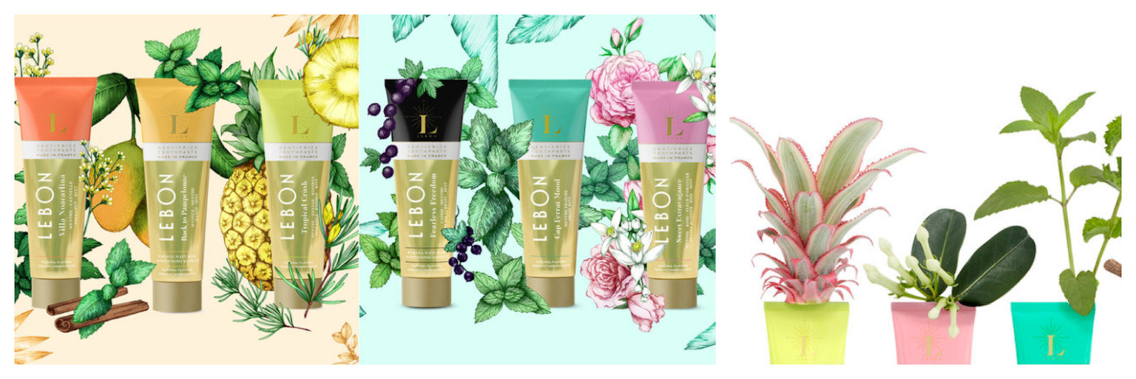 Le Bon French toothpaste made from plants is free from triclosan, a potentially toxic ingredient, available to buy at French beauty brand store in Paris, Oh My Cream!