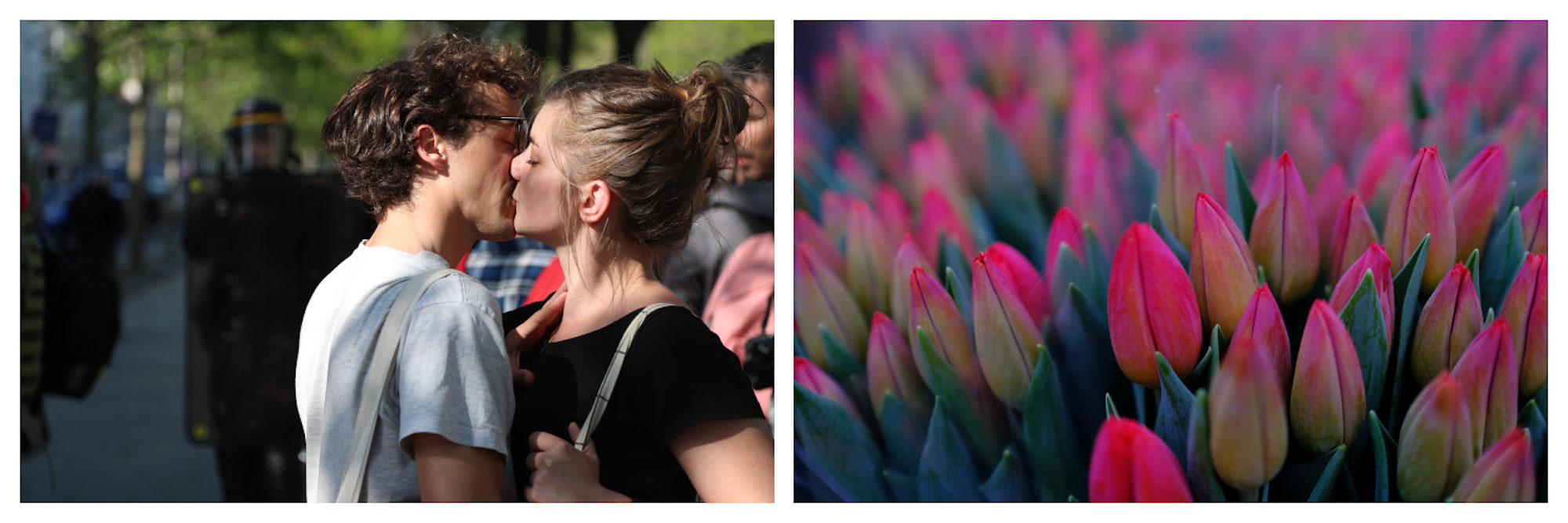 A couple in love kissing on the streets of Paris (left) and beautiful pink tulips on a flower stand in Paris on Valentine's Day (right).