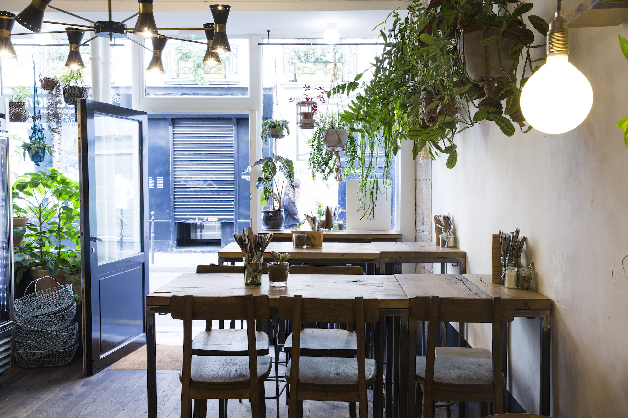 Inside gluten-free coffee shop Wild and the Moon in Paris, with its hanging plant baskets and timber tables and chairs.