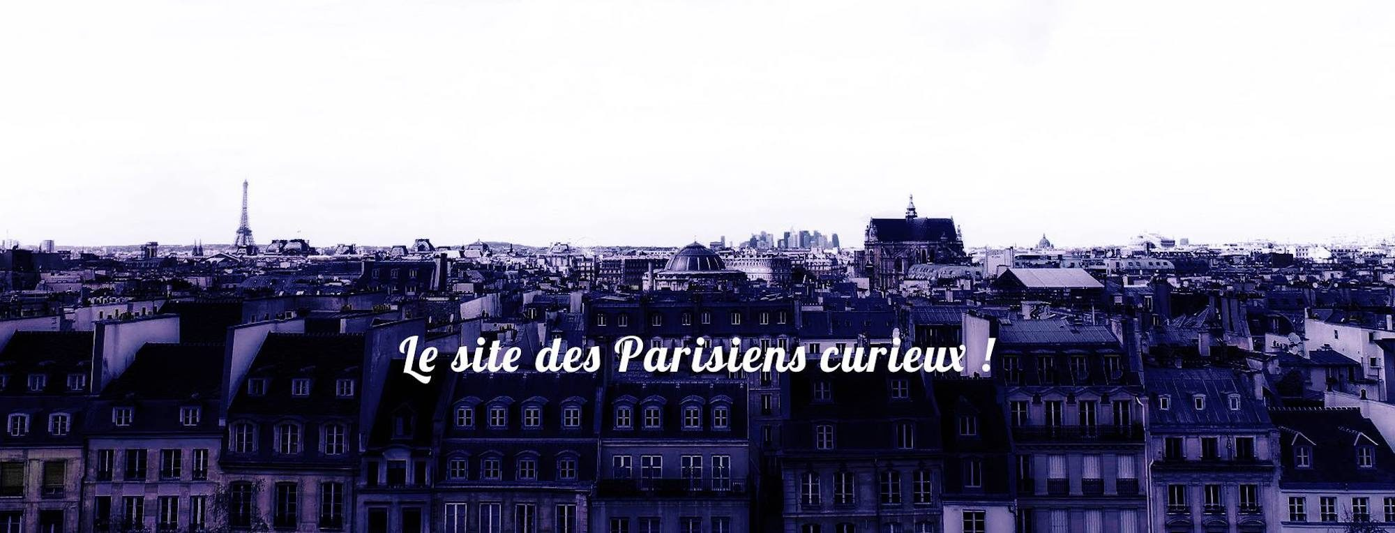The Paris skyline with the zinc rooftops and chimney tops in the foreground and the words 'Le site des Parisiens curieux' (the website for curious Parisians) splashed across the image.