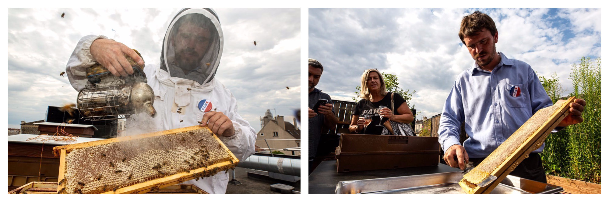 Beekeepers tending to their hives on the Paris rooftops.
