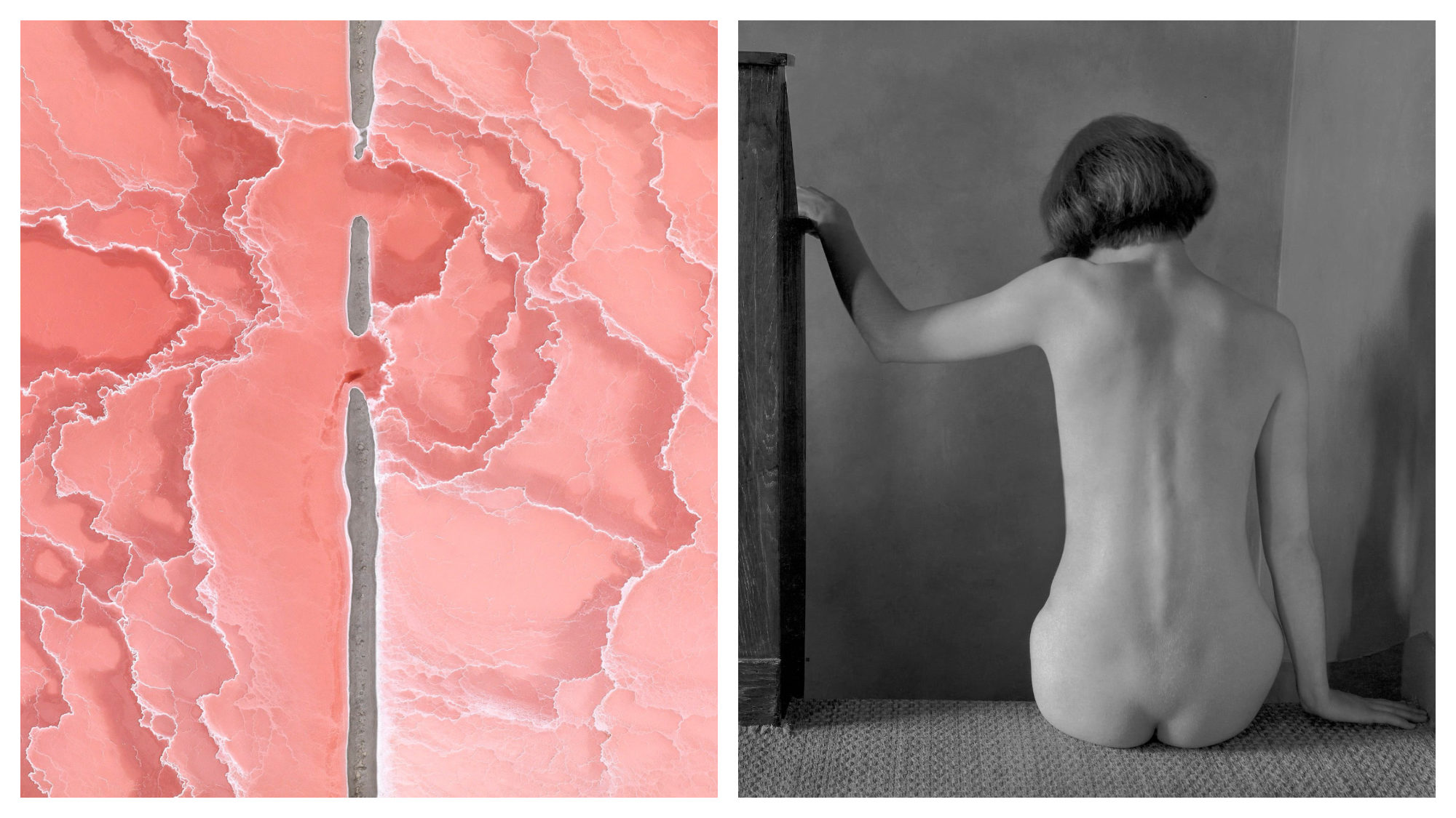 A pink abstract work of art at Fotofever (left) and a black and white photograph of a naked woman's back as she sits (right).