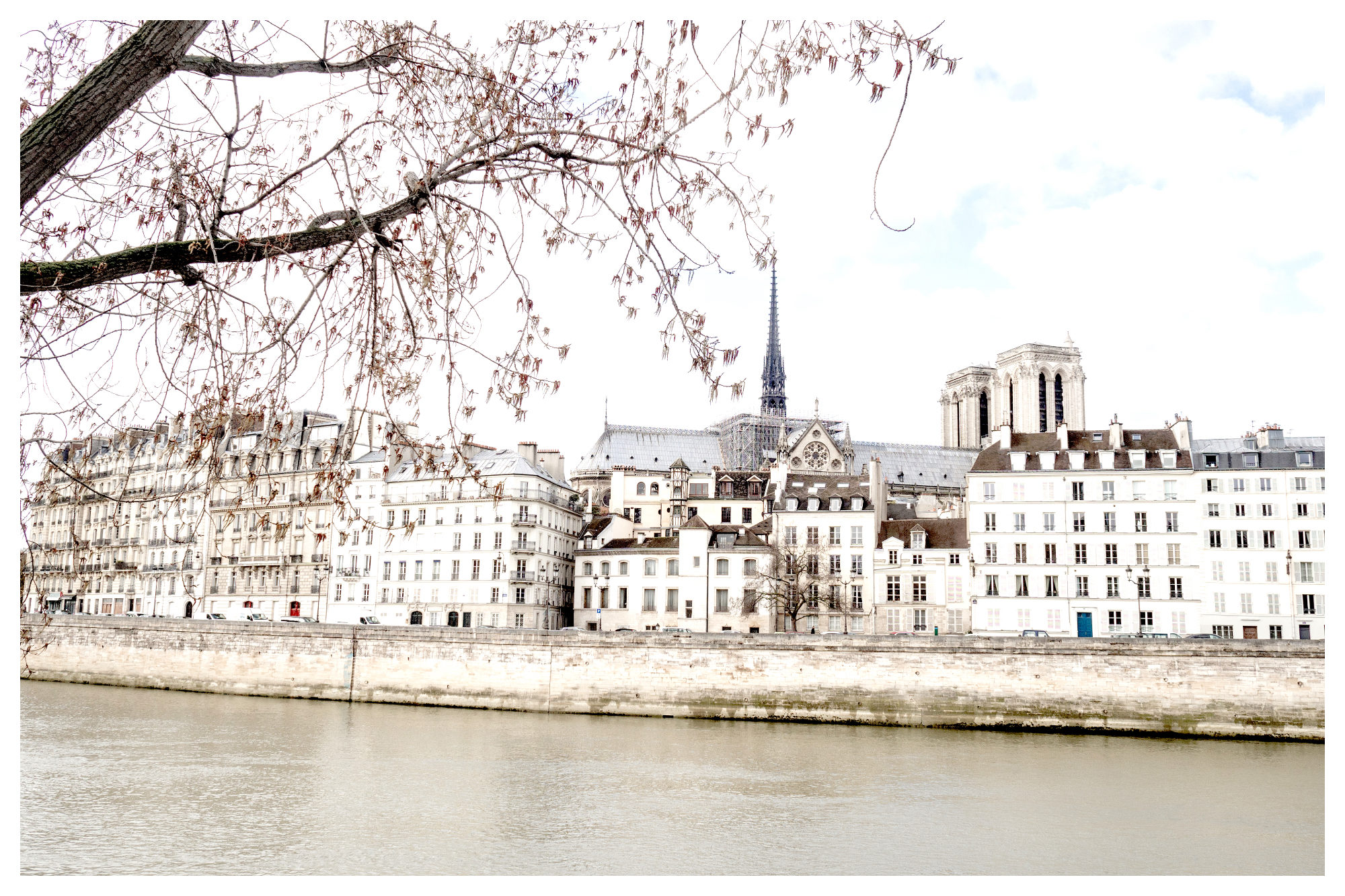 A view of the River Seine lined by beautiful white stone buildings and Notre Dame Cathedral peeping out the top.