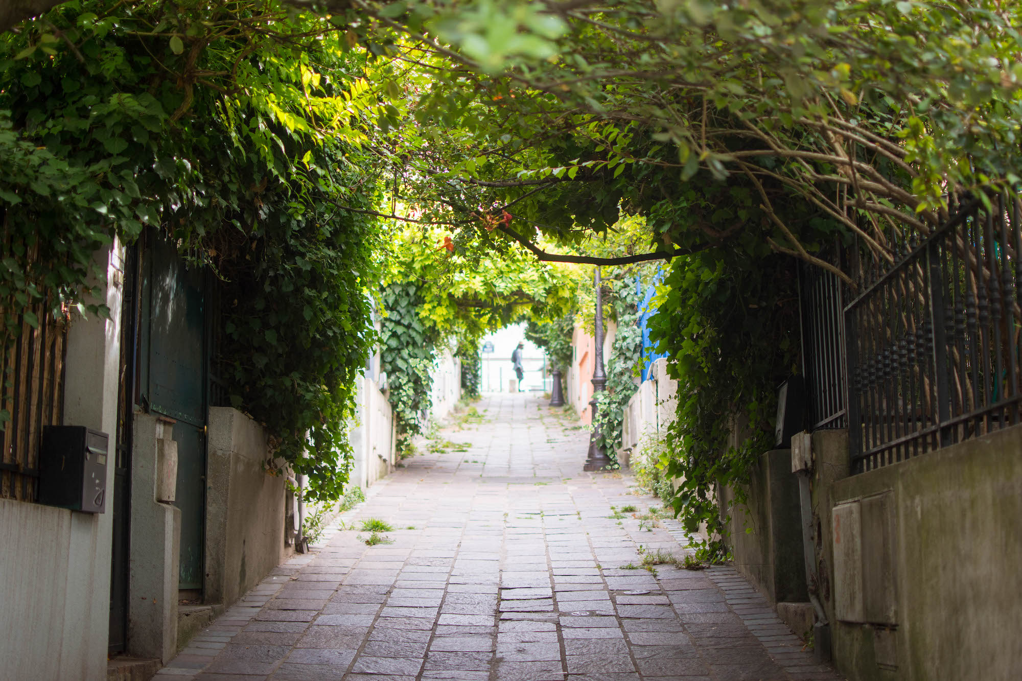 Branches, heavy with summer greens, droop gently into an empty cobbled pathway in the Quartier de la Mouzaïa, a village-like neighborhood in Paris' 19th arrondissement.