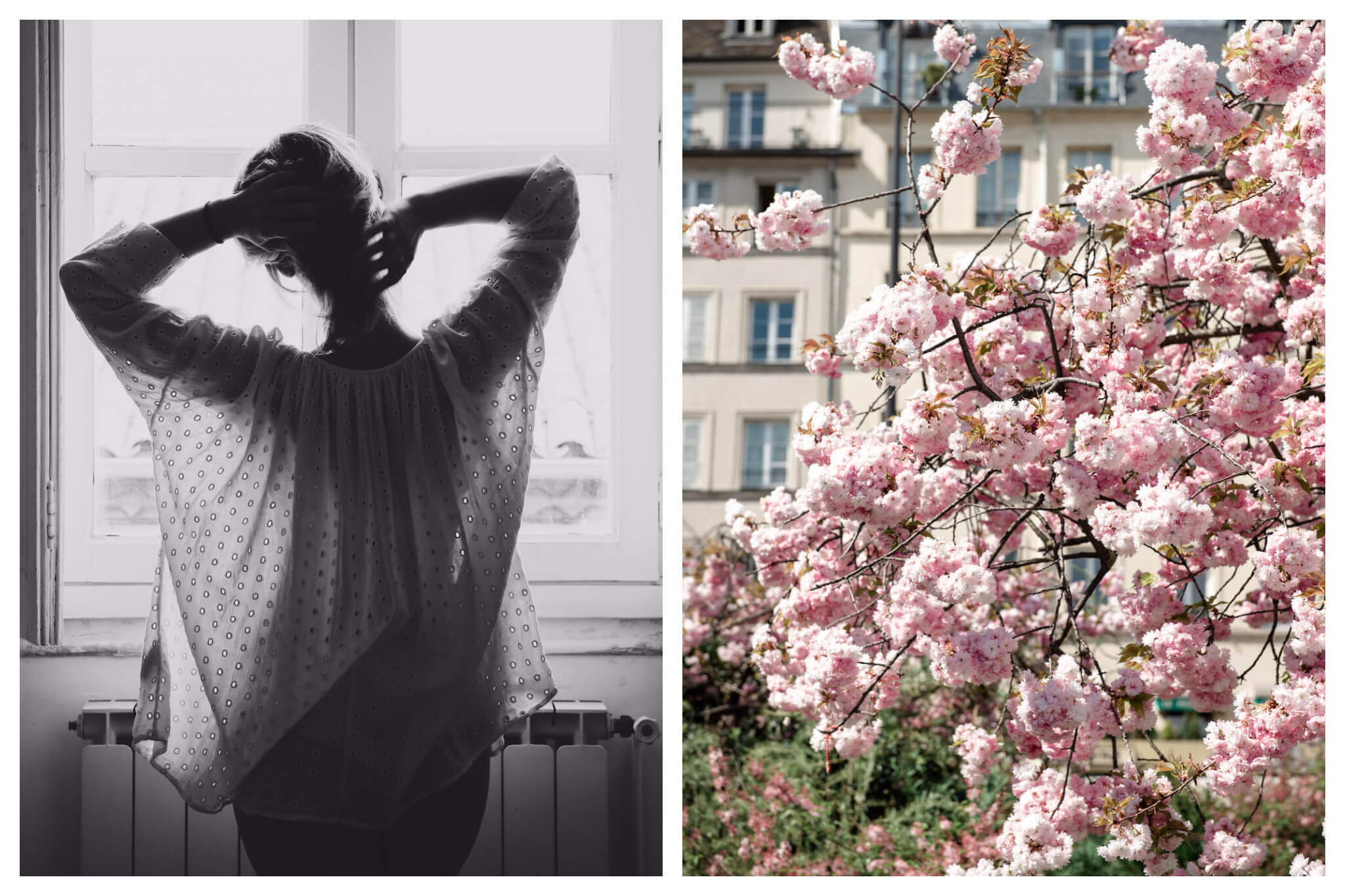 Left, woman seen from the back as stays home during the Covid-19 pandemic. Right, cherry tree blossoms in Paris spring at the moment.