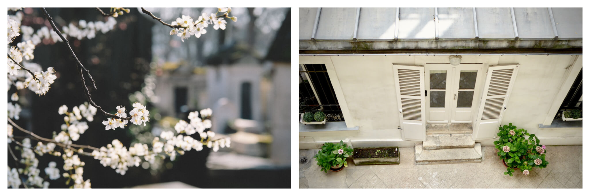 Left, flowers blooming all over Paris. Right, we're all staying indoors in Paris during the pandemic.