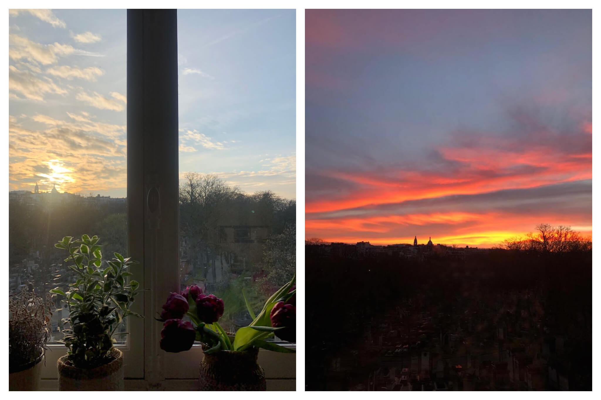 Left: Plants sit by a window in Miranda's Paris apartment as the sun begins to set for the evening. Right: A beautiful sunset  with Sacre Coeur in the background can be seen from Miranda's tiny studio apartment in Paris.