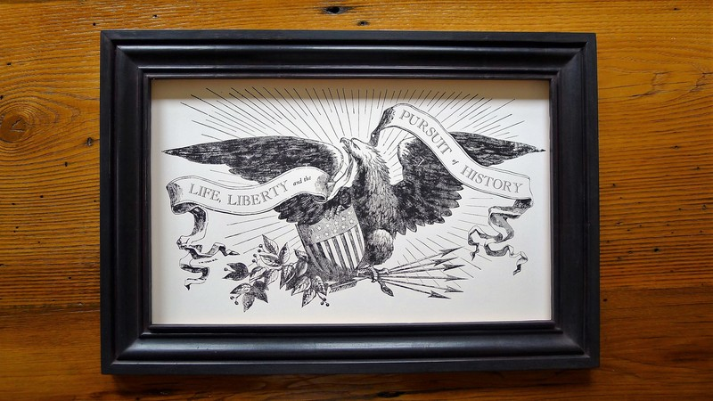"""Life, liberty and the pursuit of history"" framed print"