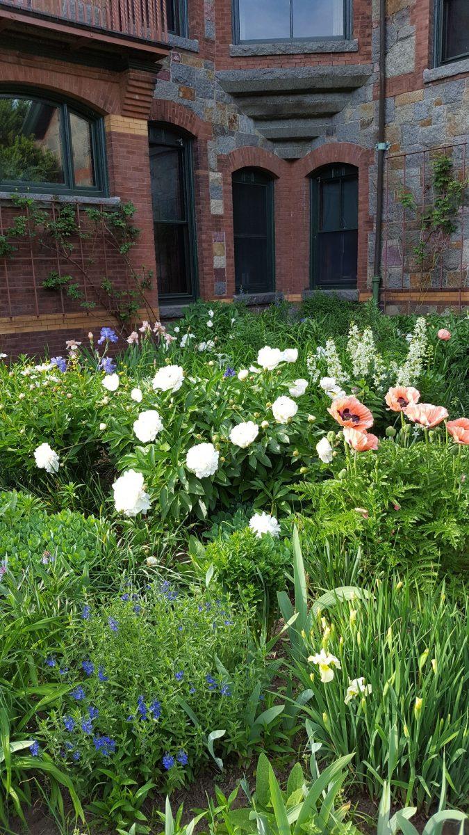 Eustis flower garden