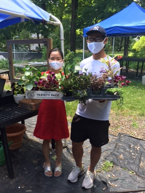 Two people in masks stand holding boxes of plants.