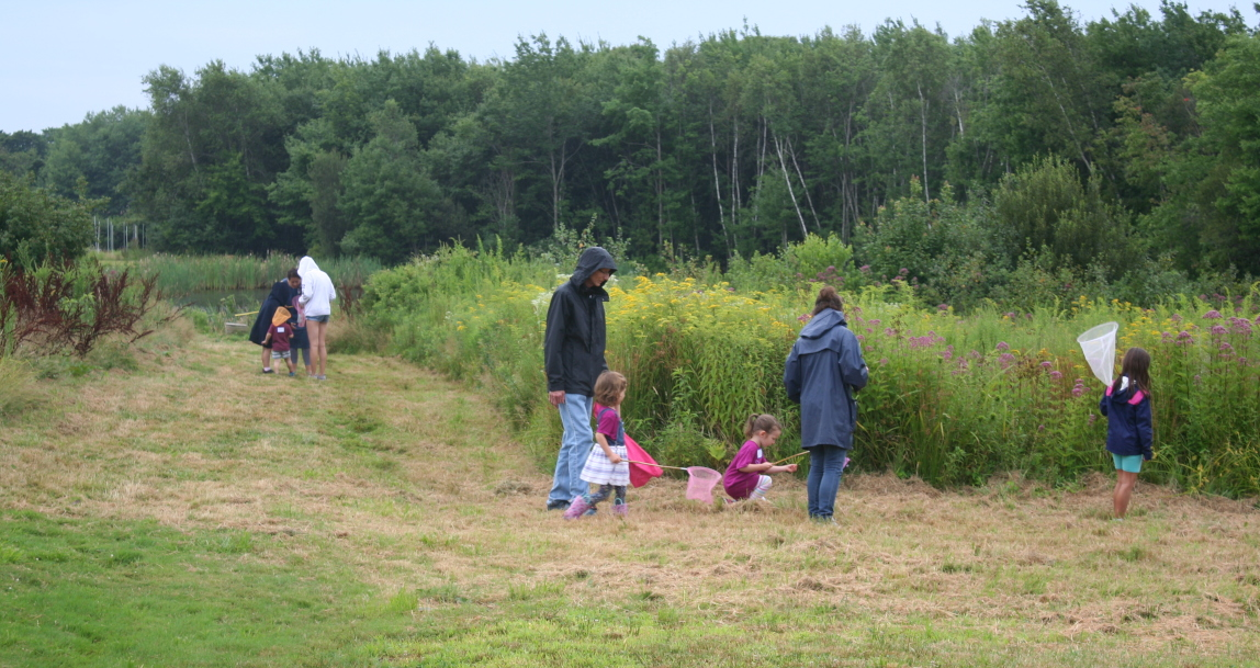 Small children and their caregivers on a bug hunt at Casey Farm