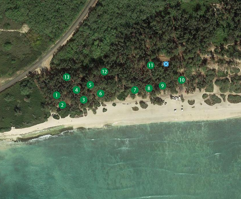 Hau Ula Beach Park Good For Camping