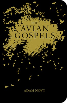The Avian Gospels photo