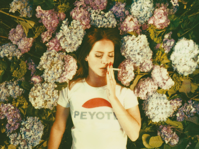 An Open Letter to Lana del Rey photo