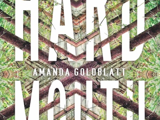 Empathy in the Usual Way: Elizabeth Ellen Interviews Amanda Goldblatt photo