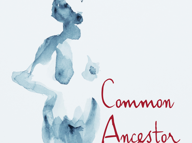 Common Ancestor: An Interview with Jenny Irish  photo