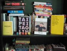 Crib Notes: My Experience Reading Taipei by Tao Lin photo