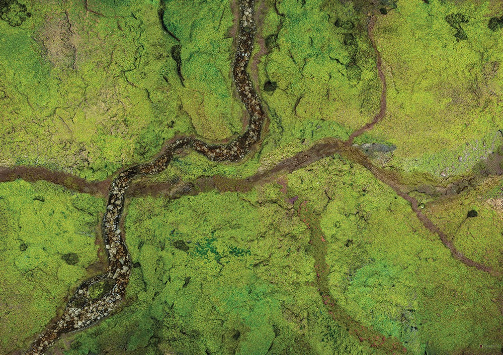 """Conquest, River Valley Mat, 48"""" x 72"""" (KWG16-64)"""