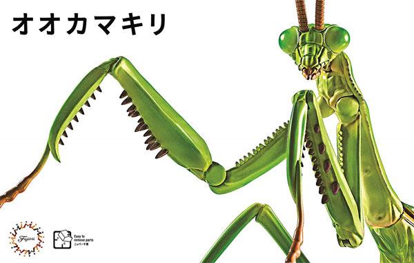 Fujimi Biology Edition Big Mantis