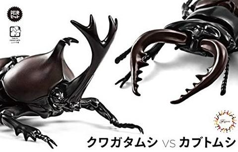 Fujimi Biology Edition Beetle vs Stag Beetle Showdown Set