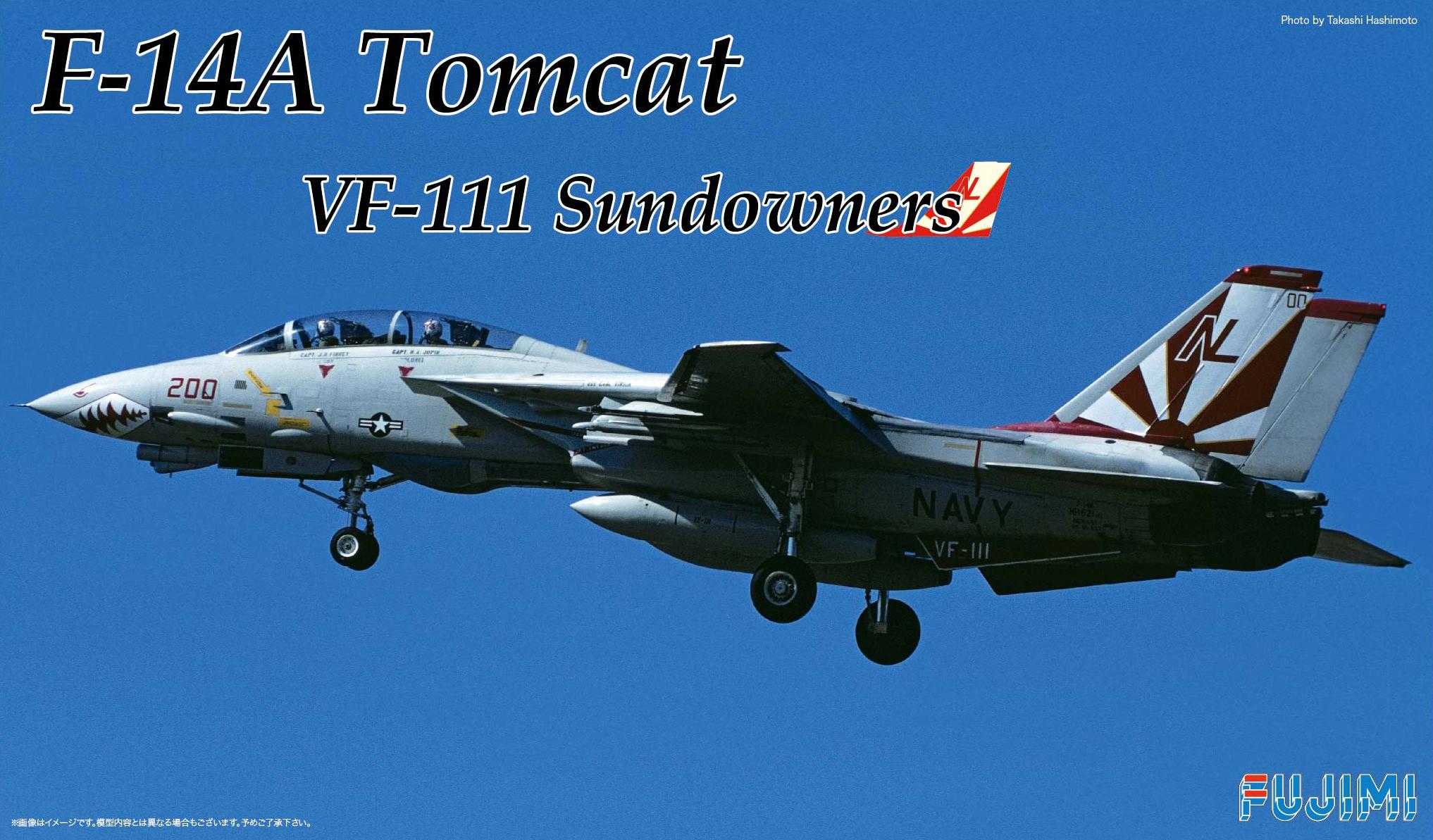 Fujimi F14-A Tomcat Sundowners