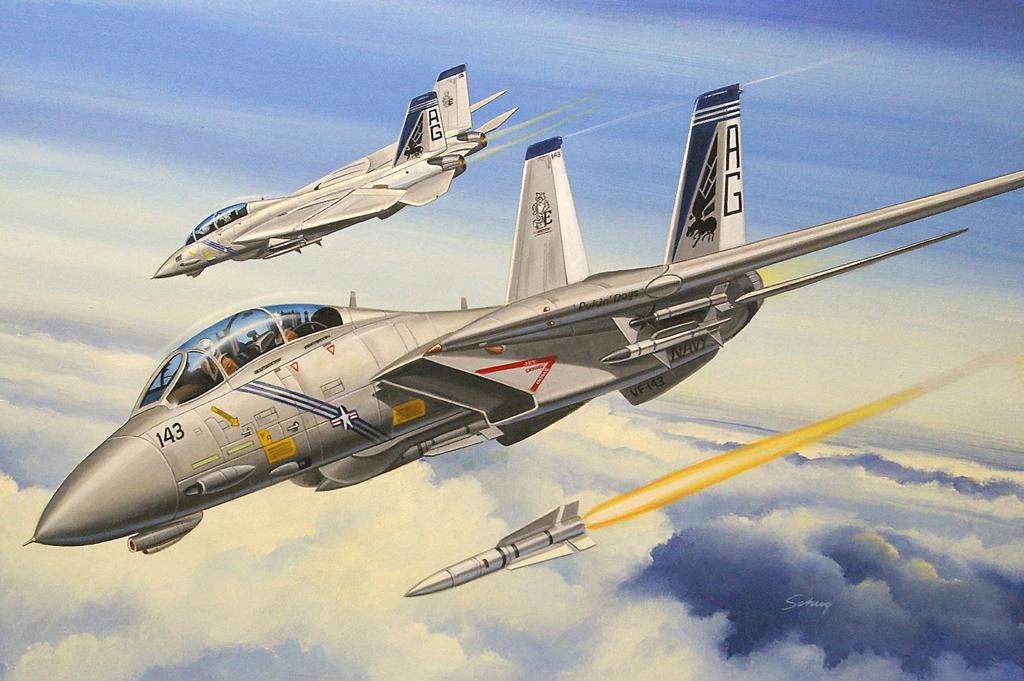Hobby Boss 1/72 F-14B Tomcat