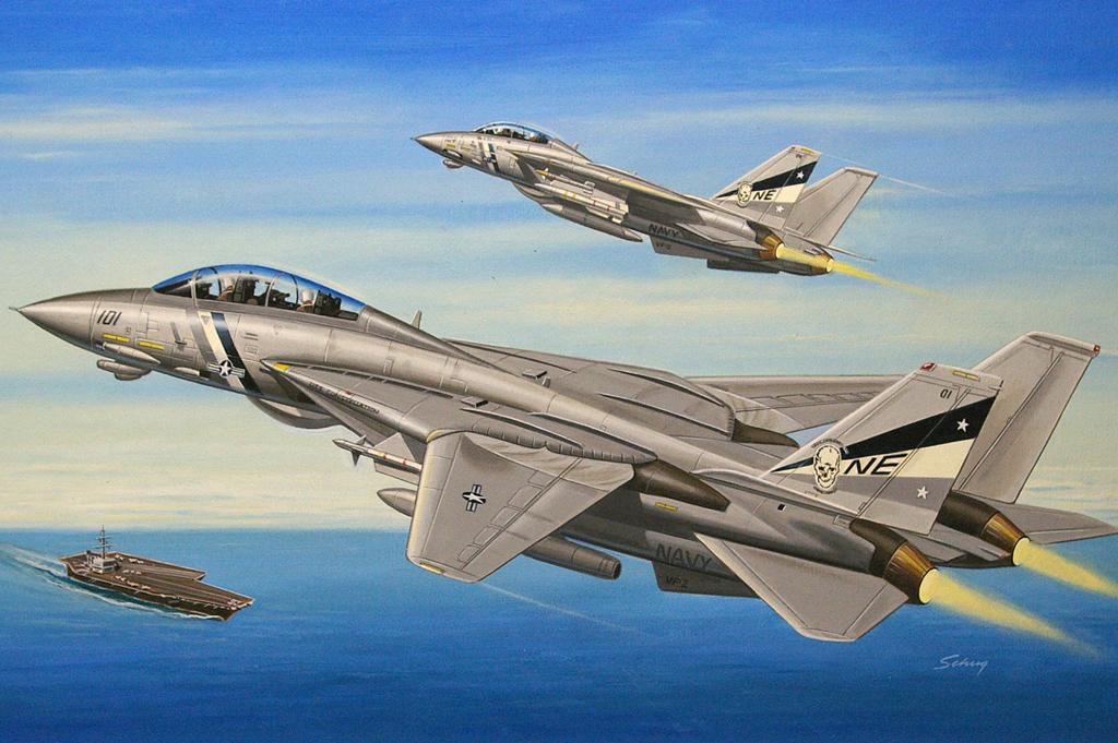 Hobby Boss 1/72 F-14D Super Tomcat