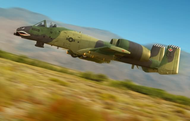 "Hobby Boss A-10A ""THUNDERBOLT"" II"
